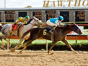 Apple Martini wins the Illini Princess.