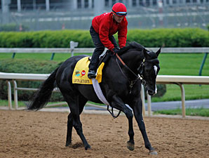 Archarcharch Churchill Downs 04/22/11..