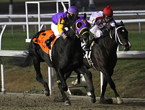Archarcharch wins the 2010 Sugar Bowl.