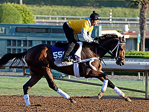 Artemis Agrotera - Breeders Cup, October 28, 2014