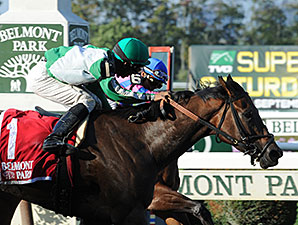 Artemis Agrotera wins the 2014 Gallant Bloom.
