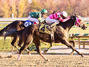 Art of the Hunt wins the 2011 Squan Song Stakes.