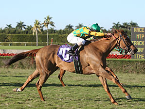 Askbut I Won'ttell wins the 2010 My Charmer.
