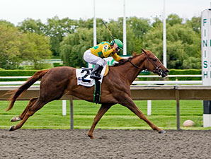Askbut I Won'ttell wins the 2010 Illinois Owners Stakes Fillies.