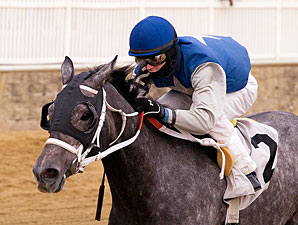 Aspenglow wins the 2011 What A Summer Stakes.