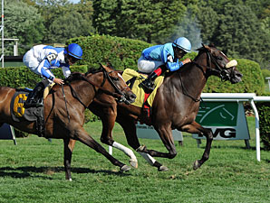Assateague wins the 2013 De La Rose Stakes.