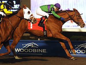 Athena Rose wins the 2011 Jammed Lovely Stakes.