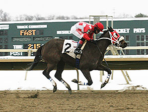 Aunt Ellipsis wins the 2014 Donna Freyer Stakes.