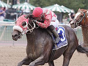 Aunt Ellipsis  wins the 2014 Dr. Teresa Garofalo Memorial Stakes.