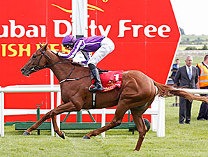 Australia wins the 2014 Irish Derby.