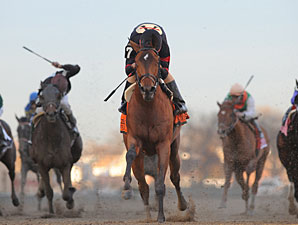 Awesome Feather wins the 2011 Gazelle.