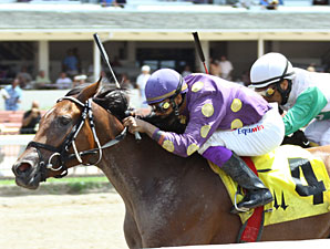 Awesome Feather wins the 2010 JJ's Dream Stakes.