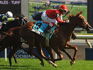 Awesome Fire wins the Wonder Where Stakes.