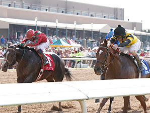 Awesome Gem, inside, and Flat Out duel in the Lone Star Handicap.