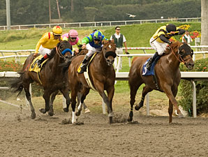 Awesome Gem wins the 2010 Hollywood Gold Cup.