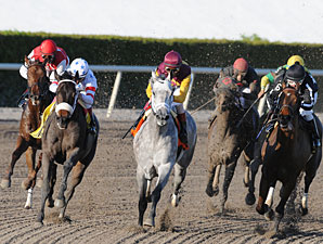 Awesome Maria wins the 2011 Sabin Stakes.