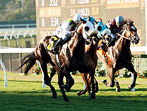 Awesome Return wins the 2014 Let It Ride Stakes.