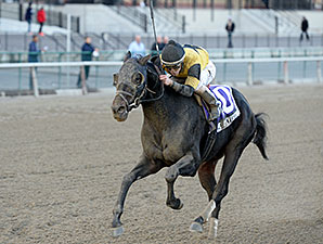 Awesome Vision wins the 2013 Move It Now Stakes.
