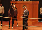 Fasig-Tipton July Sale Wrap-Up