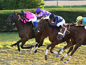 Bad Debt wins the 2012 Bonnie Heath Turf Cup.