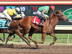 Badge of Glory wins the 2013 Frances Genter Stakes.