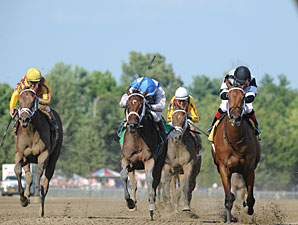 Bahnah and Brazen Persuasion dead heat in the 2013 Schuylerville.