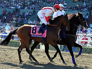 Balance the Books - 2012 Breeders' Cup.