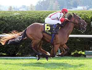 Balance the Books wins the 2012 Bourbon Stakes.