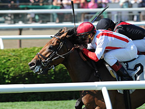 Balance the Books wins the 2013 Stroll.