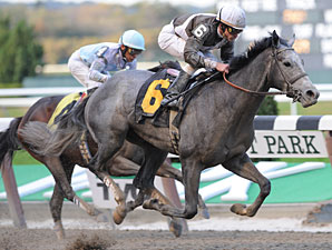 Bandbox wins the 2010 Sleepy Hollow.