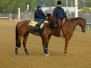 Barbaro at Churchill Downs, April 28, 2006.