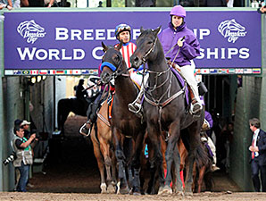 Bayern prior to the Breeders' Cup Classic.