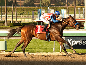 Bayern, with Gary Stevens aboard, wins a $58,000 allowance test for 3-year-olds at Santa Anita by 15 lengths.