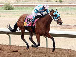 Be My Desert Angel wins the 2014 Aztec Oaks.