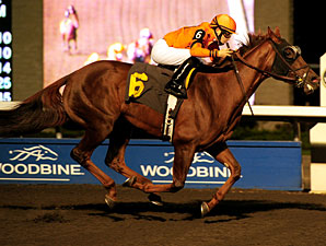 Bear It's Time wins the 2011 Classy 'n Smart Stakes.
