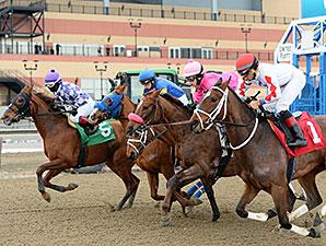 Before You Know It wins the 2015 Karakorum Elektra Stakes.