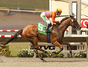 Beholder wins the Torrey Pin Stakes.