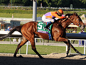 Beholder wins the 2013 Breeders' Cup Distaff.