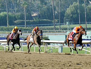 Beholder wins the 2012 Breeders' Cup Juvenile Fillies.