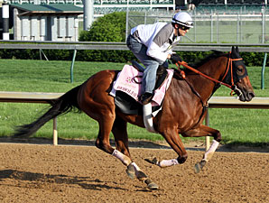 Beholder - Churchill Downs, May 1, 2013
