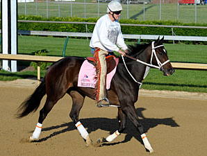 Believe You Can - Churchill Downs 04/27/2012.