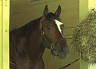 Belmont Stakes: Tonalist in the Barn