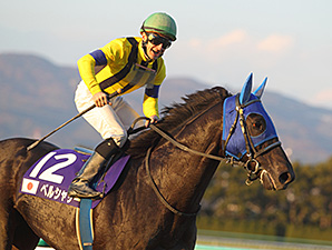 Belshazzar wins the Japan Cup Dirt.