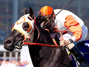 Ben's Cat wins the 2010 Maryland Million Turf Sprint.