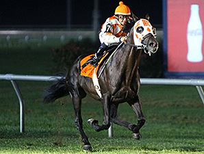Benwill wins the 2014 Red, White and Blue Overnight Stakes.