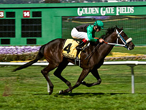 Best Present Ever wins the 2012 Campanile Stakes.