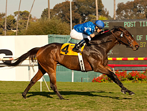 Better Lucky wins the Matriarch Stakes.