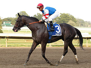 Beyondallboundarys wins the 2010 Dearly Precious.