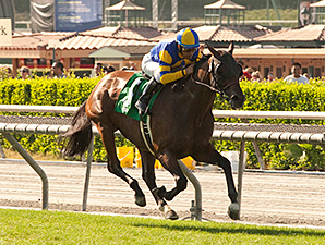 Big Kick wins the 2014 San Juan Capistrano.