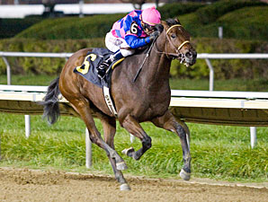 Big Looie wins the 2011 Buck's Boy.